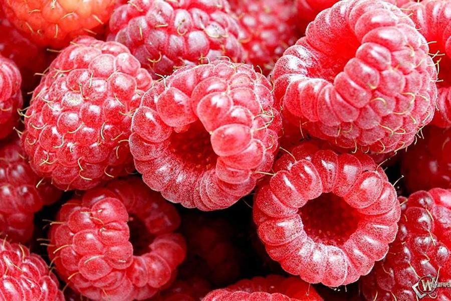 Raspberry cake with frambuesa - the raspberry
